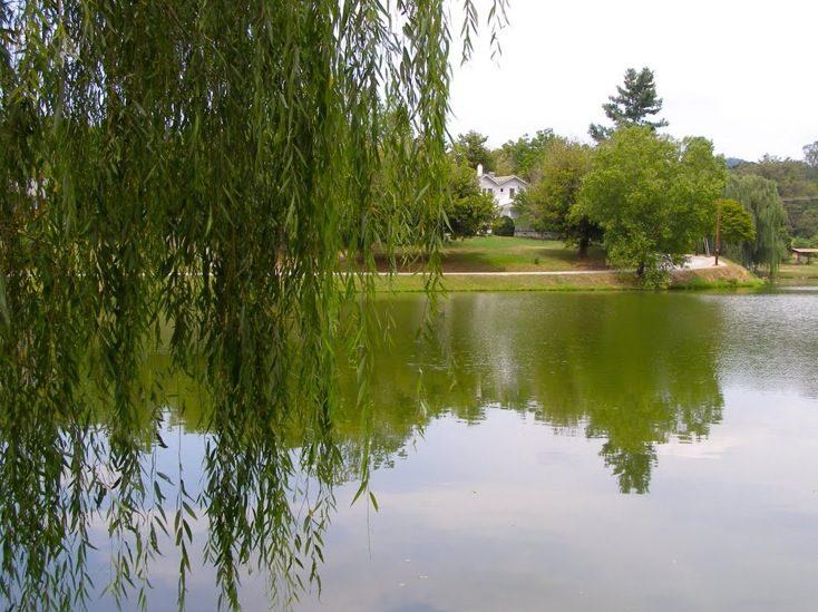 Lake Louise Weaverville