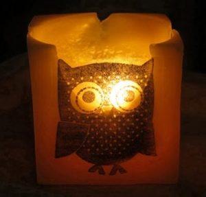 Beeswax Owl Cube Lit
