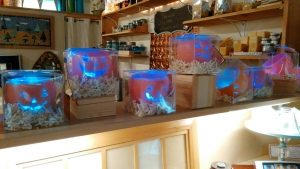 Seasonal Products from Bee Light Candle Cafe